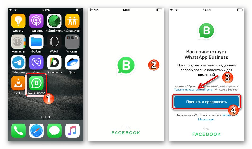 WhatsApp Business для iOS первый запуск программы на iPhone