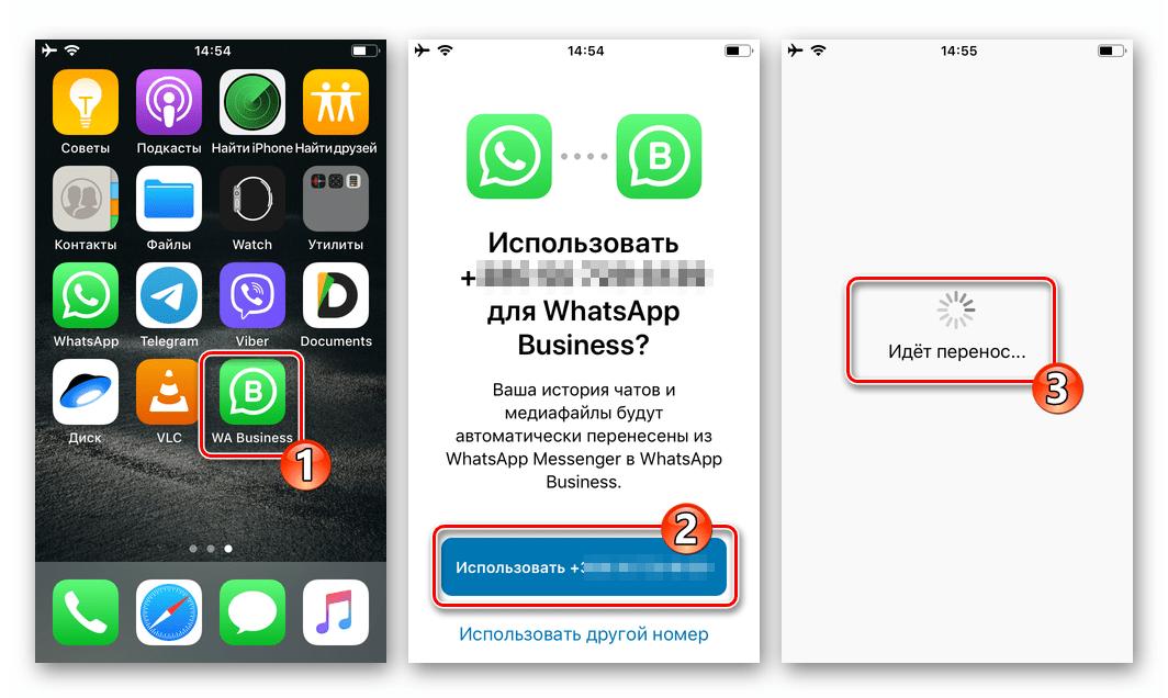 WhatsApp Bussiness для iOS перенос данных из обычной версии мессенджера