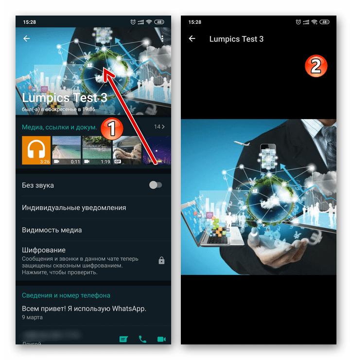 WhatsApp для Android - просмотр аватарки контакта в полном размере