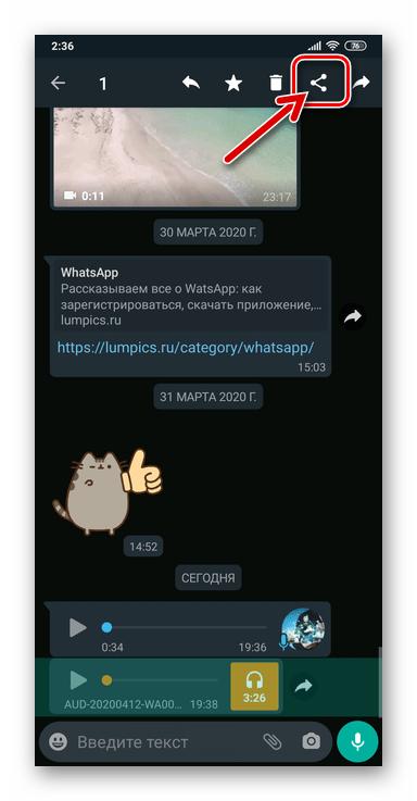 WhatsApp для Android - Вызов функции Поделиться для выделенной в чате аудиозаписи