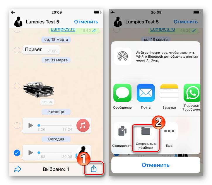 WhatsApp для iOS вызов меню Передать применимо к аудиозаписи из чата, пункт Сохранить в Файлы