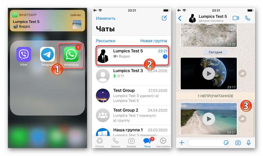 WhatsApp для iOS запуск мессенджера, переход в чат с видео