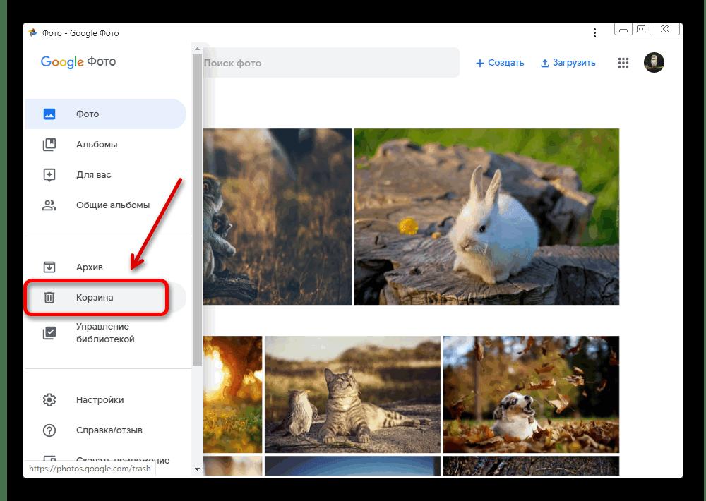 Загрузить в гугл свои фотографии