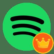 Как оформить подписку на Spotify Premium