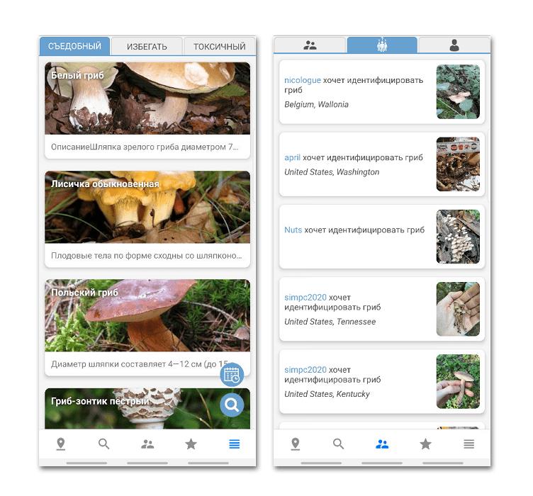 Приложение Mushroom Identify на Android
