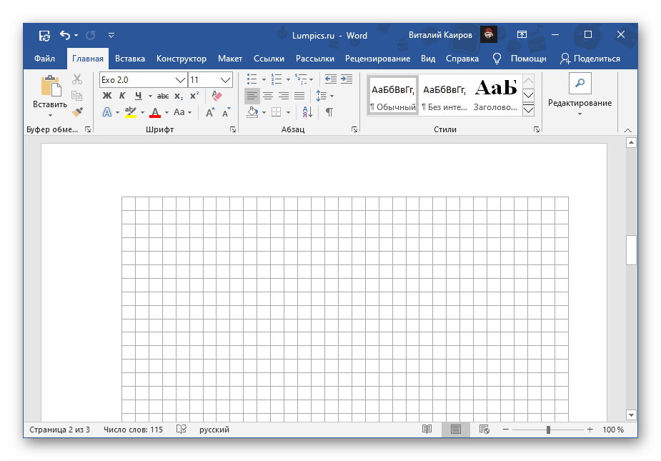 Результат добавления сетки нужных размеров в документе Microsoft Word
