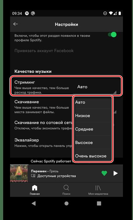 Определение качества стриминга музыки в настройках мобильного приложения Spotify для Android