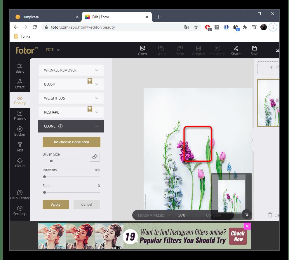 Успешное удаление лишнего с фото при помощи онлайн-сервиса Fotor