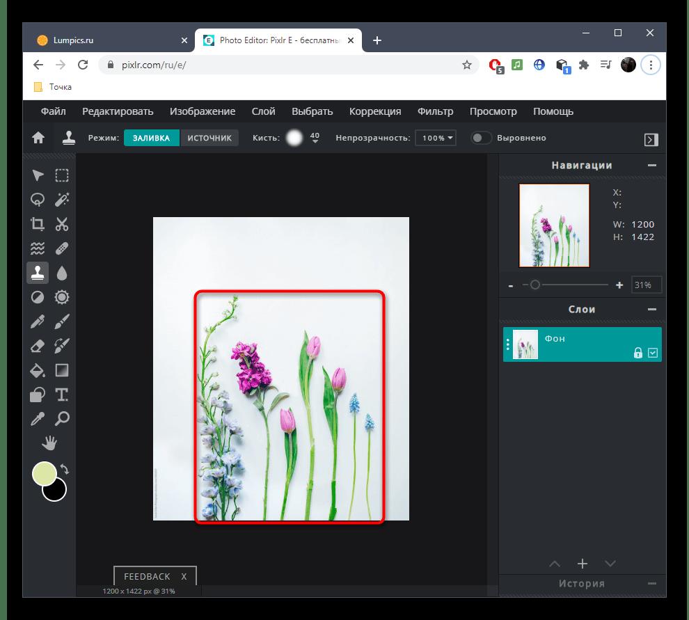 Успешное удаление лишнего с фото при помощи онлайн-сервиса PIXLR