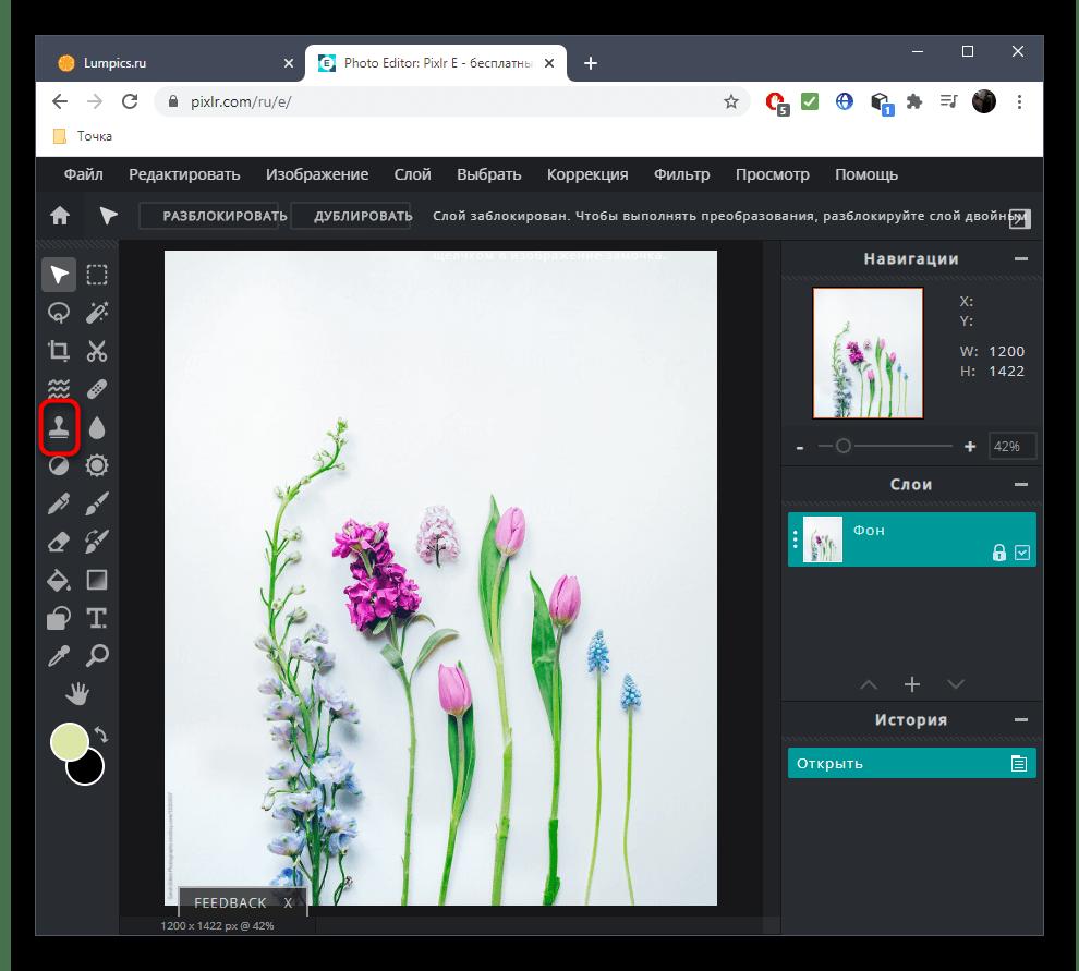 Выбор инструмента для удаления лишнего с фото при помощи онлайн-сервиса PIXLR