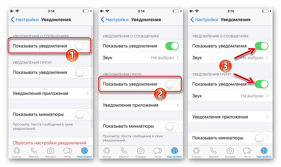 WhatsApp для iOS активация опций Показывать уведомления в настройках мессенджера