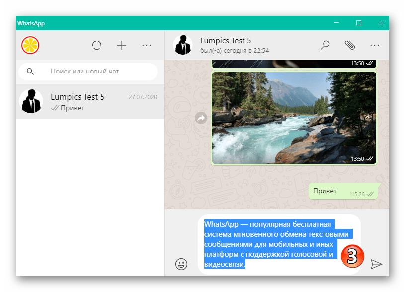 WhatsApp для Windows полностью выделенный с помощью контекстного меню текст сообщения
