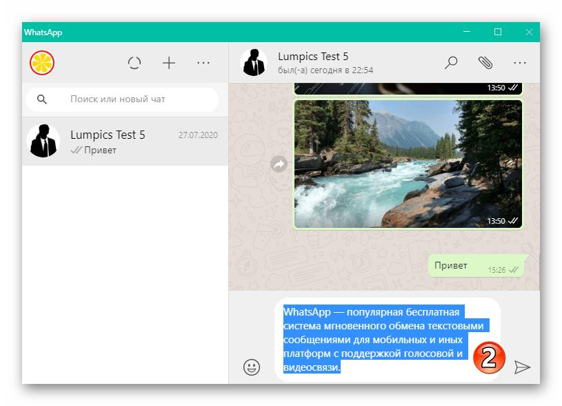 WhatsApp для Windows полностю выделенный с помощью тройного клика мышью текст сообщения в мессенджере