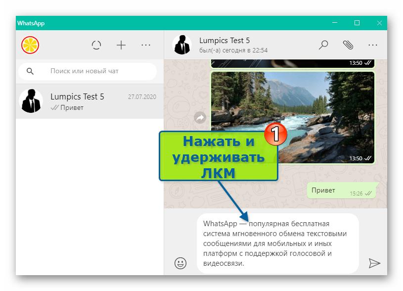 WhatsApp для Windows выделение фрагмента текста сообщения мышью