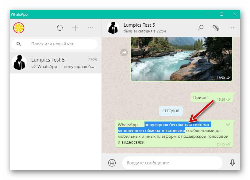 WhatsApp для Windows выделение текста в полученном или отправленном сообщении
