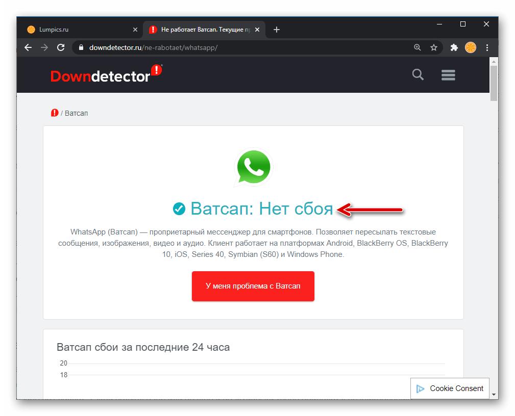 WhatsApp сайт downdetector.ru констатирует отсутствие проблем с мессенджером