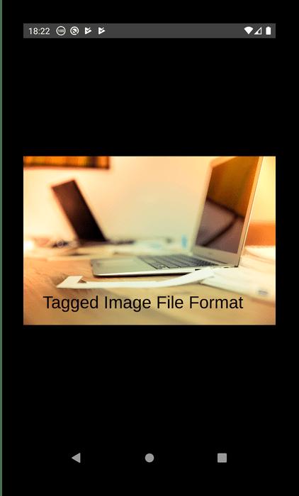 Полноэкранный просмотр файла в TIFF Photo Viewer Free для открытия TIFF на Android