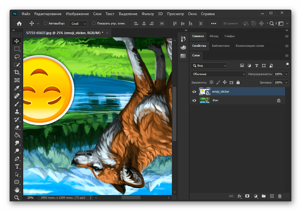 Успешное отражение полного изображения в Adobe Photoshop