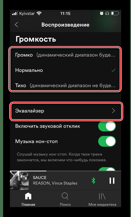 Выбор громкости и эквалайзера в настройках приложения Spotify на iPhone