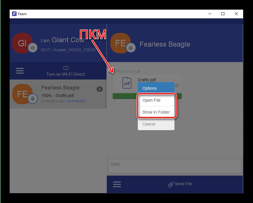 Открытие полученных данных на ПК для передачи файлов с Android на компьютер посредством программы Feem