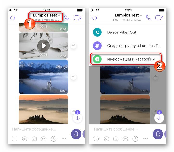 Viber для iPhone - Вызов меню чата - Информация и настройки