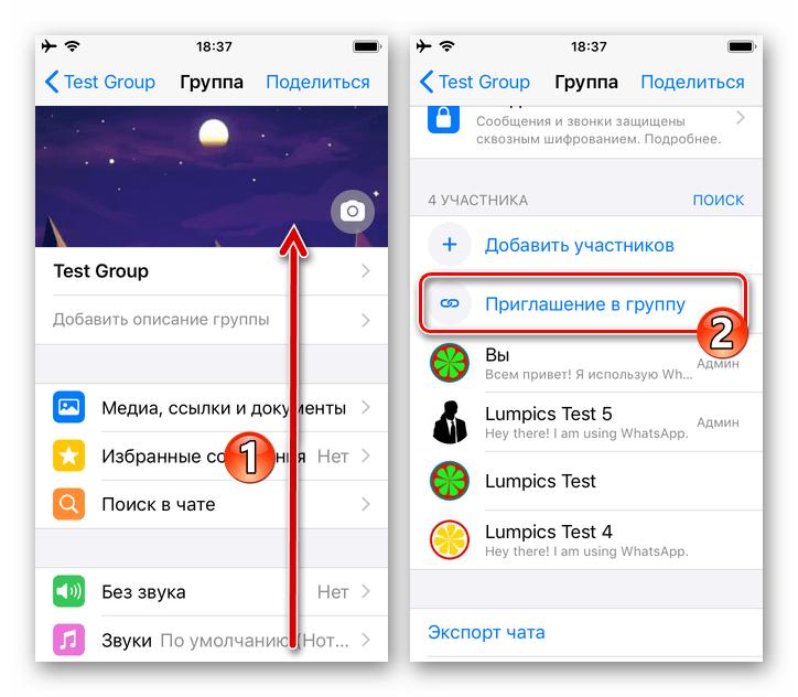 WhatsApp для iOS - Пункт Приглашение в группу в Настройках чата