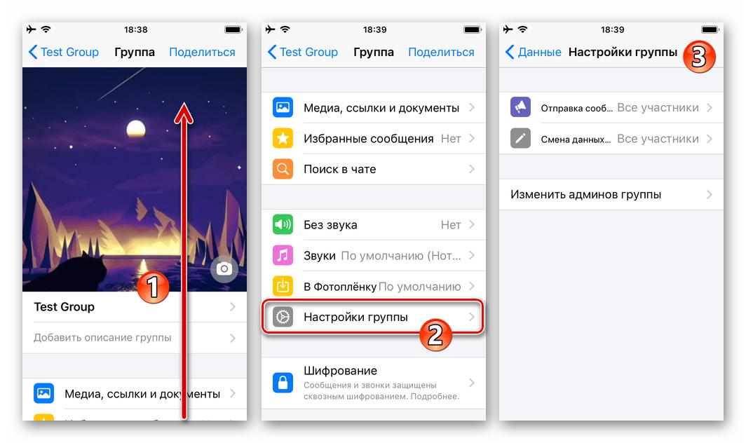 WhatsApp для iOS - раздел Настройки группы на экране Данные группового чата