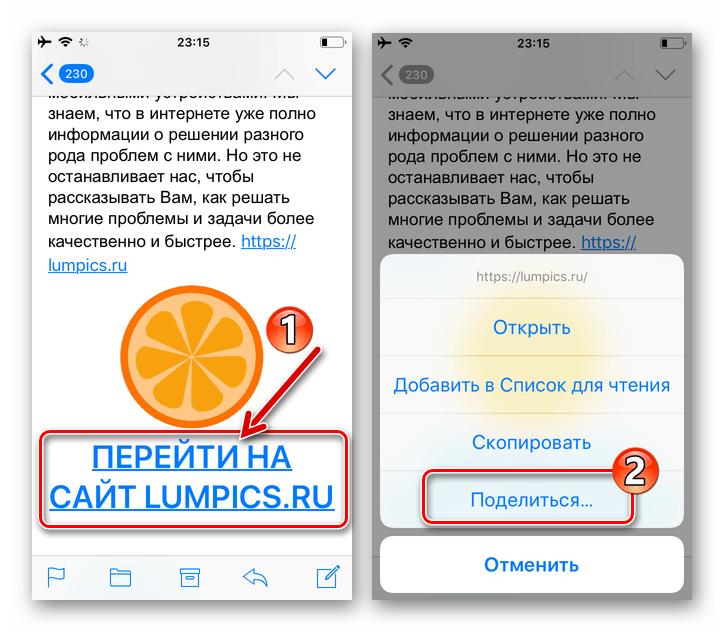 WhatsApp для iPhone как Поделиться через мессенджер полученной по электронной почте ссылкой