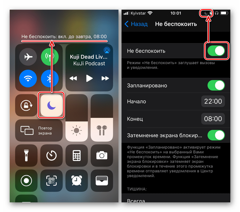 Одинаковый результат включения режима Не беспокоить в настройках на iPhone