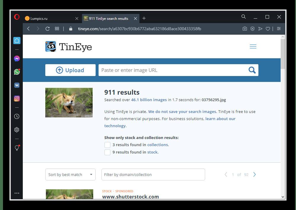 Пример успешного поиска по изображению на веб-сайте поиска TinEye