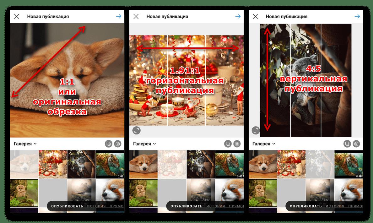 Пример различных шаблонов публикаций в мобильном приложении Instagram