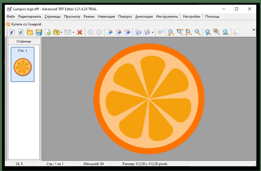 Результат открытия файла в формате TIFF в программе Advanced TIFF Editor