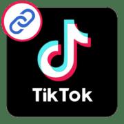 Как скопировать ссылку в Тик Токе