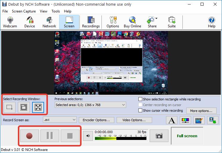 Запись видео с экрана в Debut Video Capture