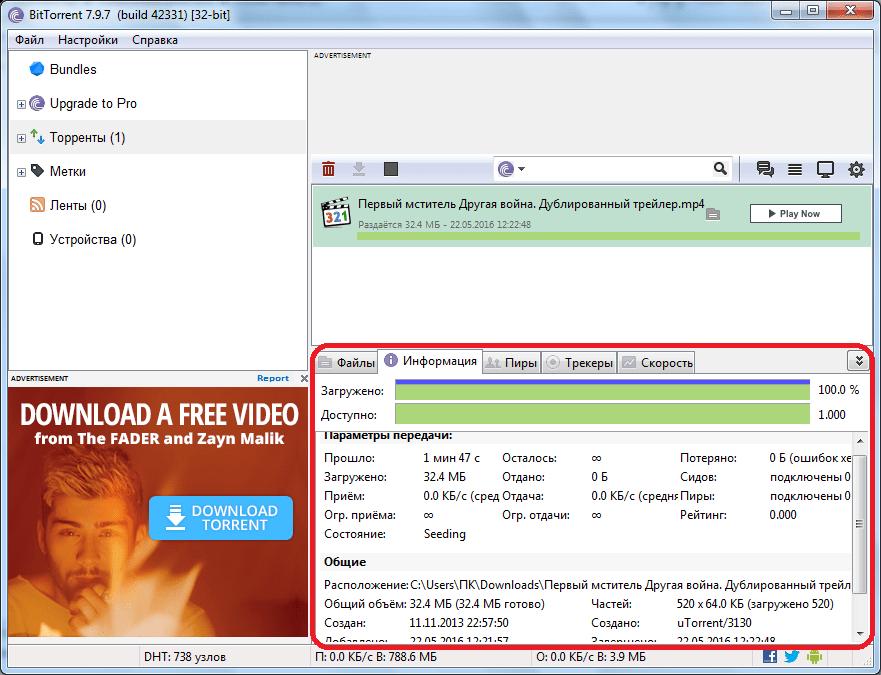 Информация о загрузке в программе BitTorrent