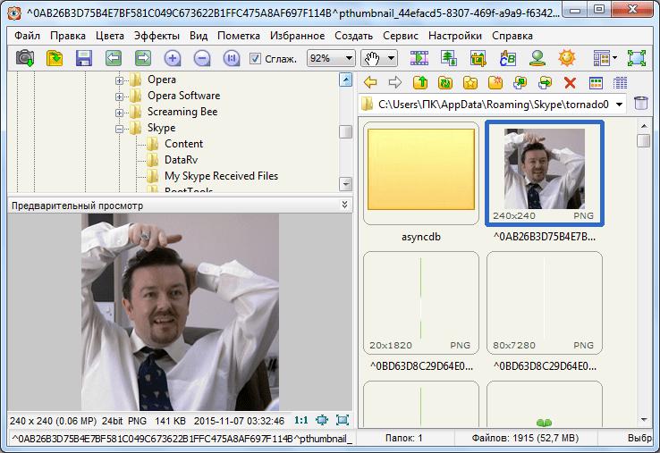 Менеджер изображений в программе Faststone Image Viewer