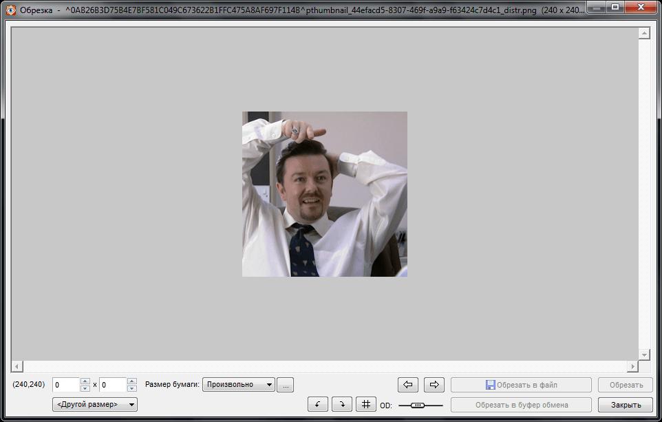 Обрезка изображения в программе Faststone Image Viewer
