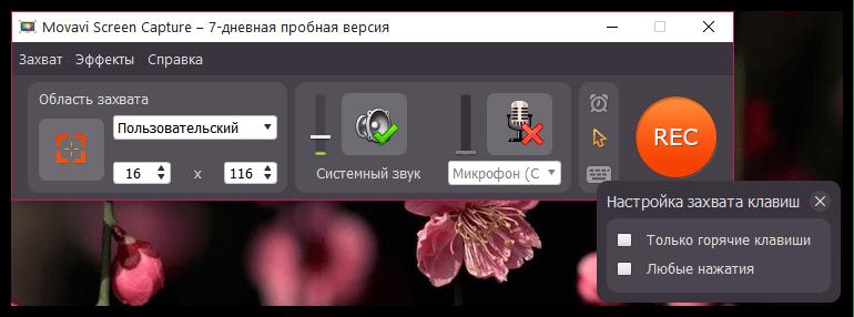 Отображение нажатий клавиш в Movavi Screen Capture