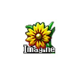 Программа Imagine