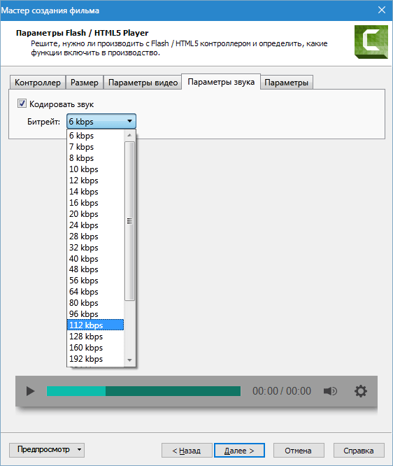 Настройка формата MP4-Flash Camtasia Studio 8 (7)