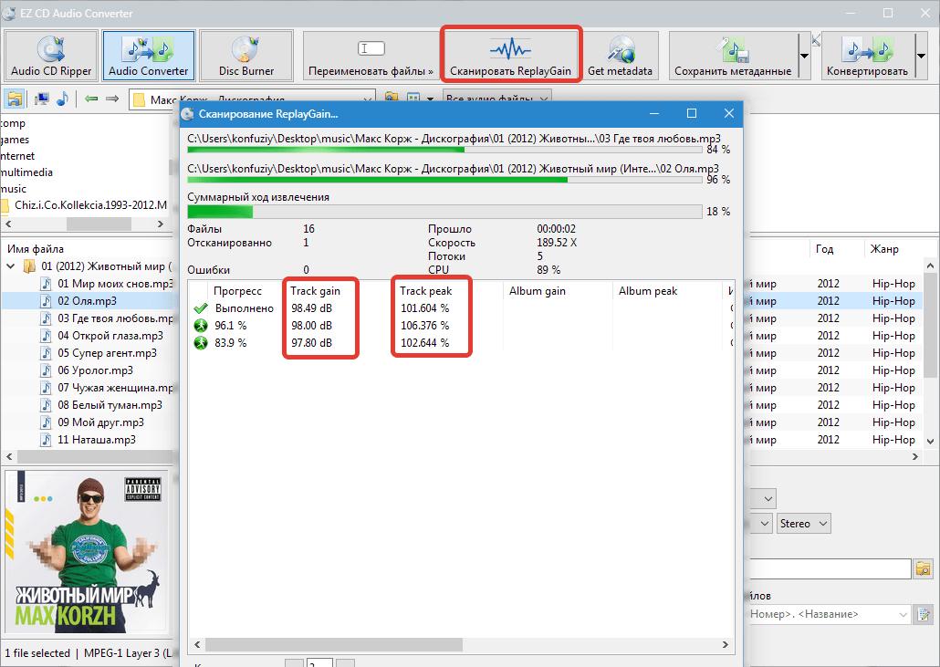 Сканирование ReplayGain EZ CD Audio Converter