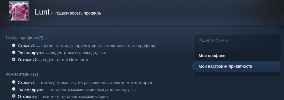 Изменение настроек приватности профиля Steam