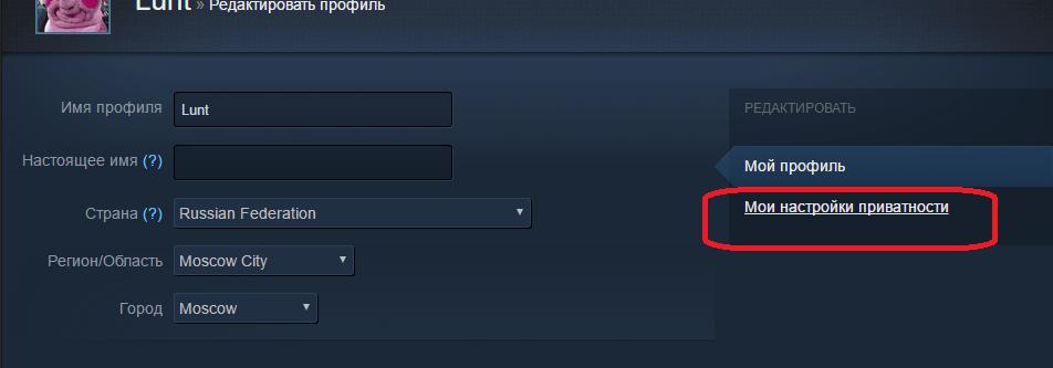 Кнопка перехода к настройкам приватности в Steam