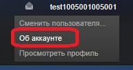 Открытие страницы с информацией об аккаунте в Steam