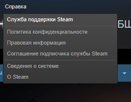 Переход на страницу службы поддержки Steam