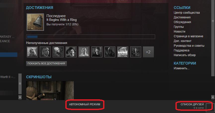 Включенный автономный режим в Steam