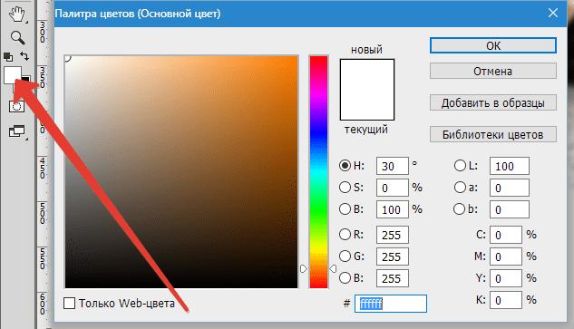 Делаем черно-белое фото цветным в Фотошопе (4)