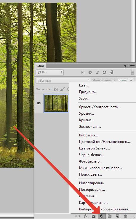 sozdaem-sepiyu-v-fotoshope-16