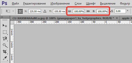 transformirovanie-izobrazheniya-v-fotoshope-6