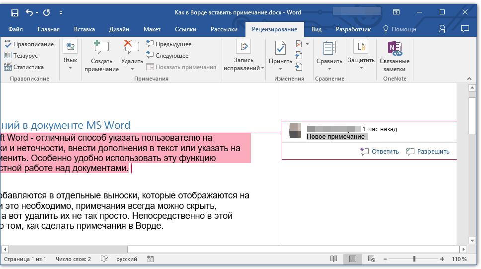 vyinoska-v-primechanii-v-word
